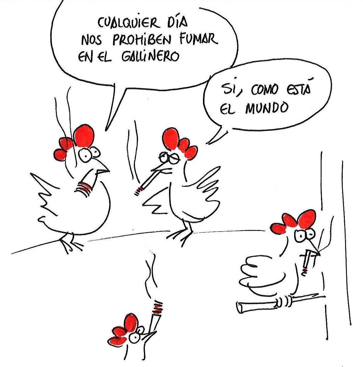 Gallinas fumadoras