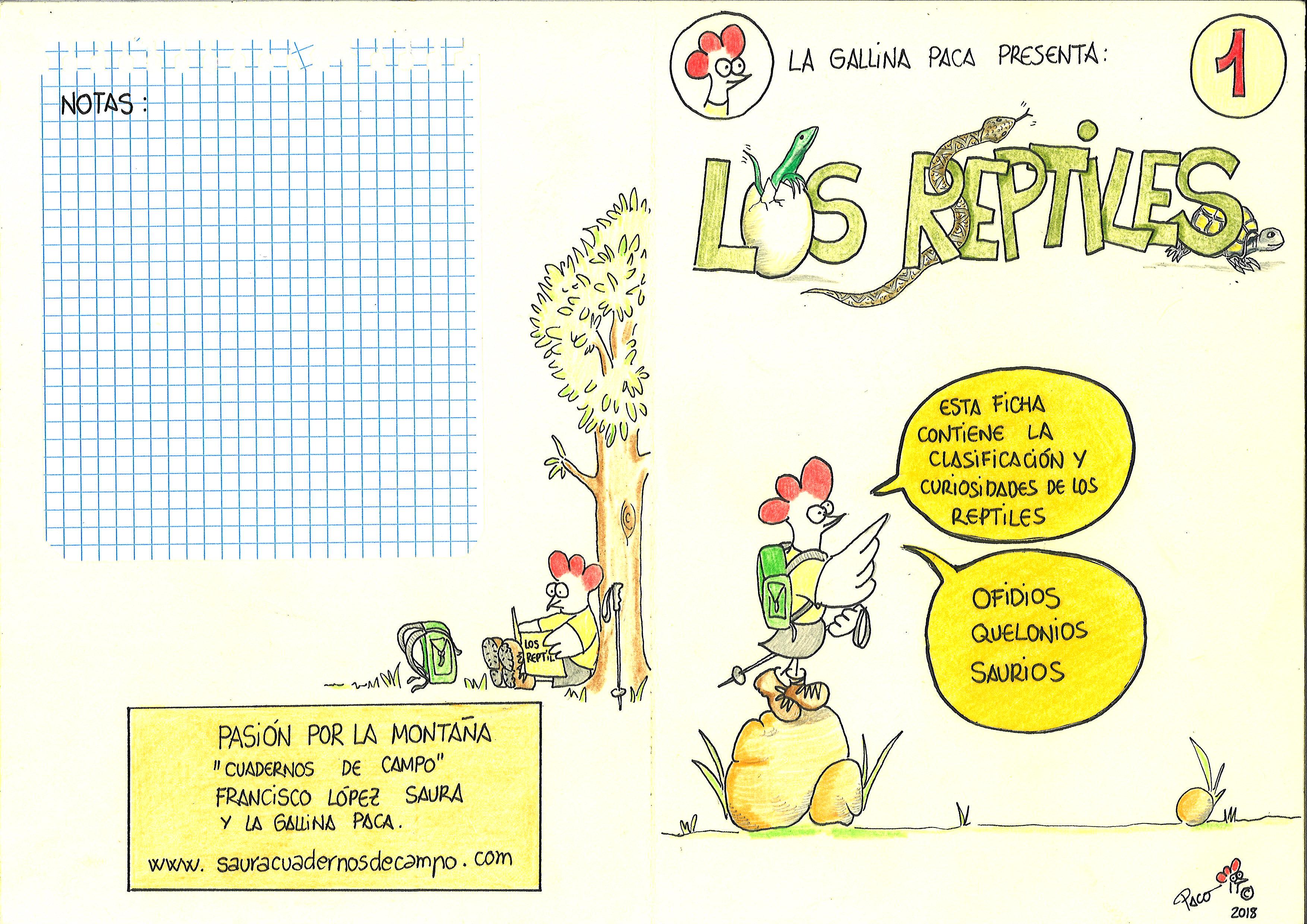 1-Los Reptiles (exterior)